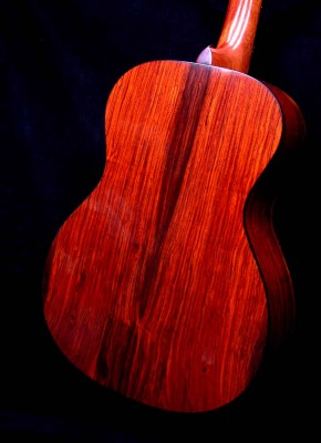 Cocobolo – Back
