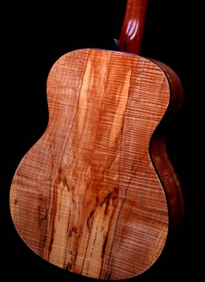 Spalted Maple – Back