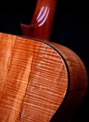 Spalted Maple – Detail