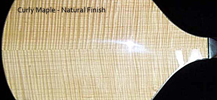 Curly Maple natural finish