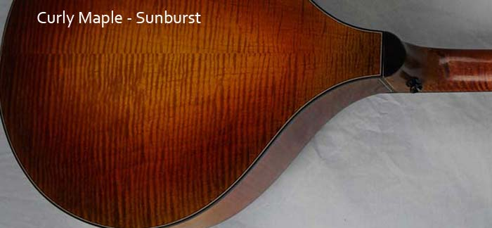 Curly Maple sunburst
